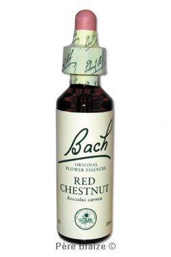 Red chestnut - 20 ml - FLEURS DE BACH ORIGINAL - NELSONS