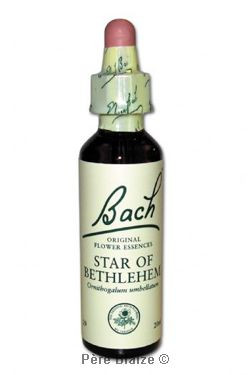 Star of bethlehem - 20 ml - FLEURS DE BACH ORIGINAL - NELSONS