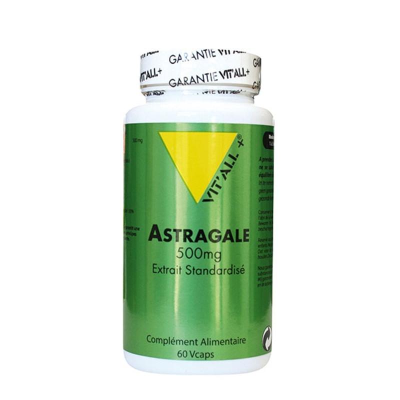 Astragale 500mg extrait standardisé - 60 gél - VIT'ALL +